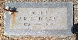 A M Bud Cape