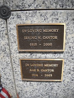 Irving N. Cantor
