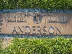 Lewis G. Anderson