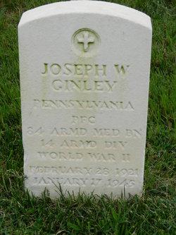 Joseph W Ginley