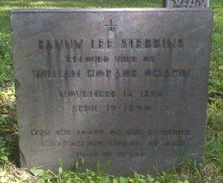 Fanny Lee <i>Stebbins</i> Chapin