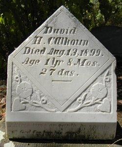 David H. Calhoun