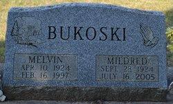 Melvin A Bukoski