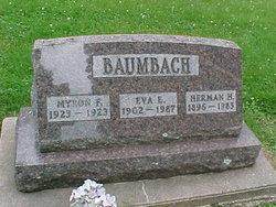 Eva E Baumbach