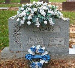 Medelle Elizabeth <i>Henderson</i> Adams