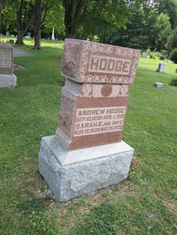 Andrew W Hodge