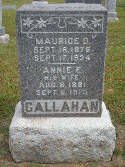 Eliza Ann Annie <i>Meekins</i> Callahan