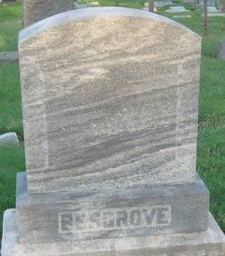 Edna Vashti Besgrove
