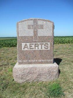 Theodore Aerts