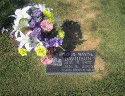 David Wayne Davidson