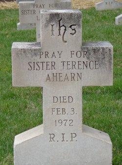 Sr Terence Ahearn