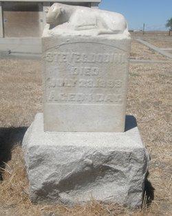 Steve C. Dodini