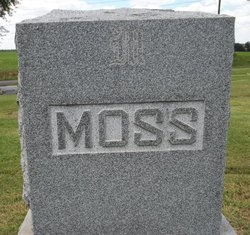 Sally Moss