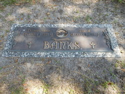 Thomas Dick Banks