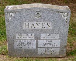 William John Hayes