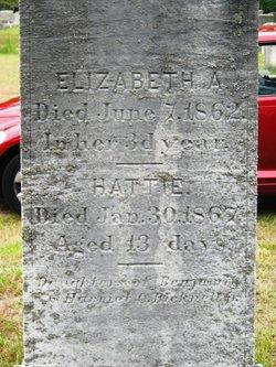 Elizabeth A. Bicknell