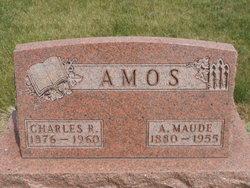 Charles R Amos