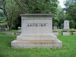 Anna D Amerling