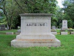 Harry W Amerling