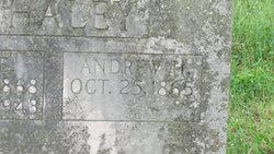 Andrew Houston Whaley