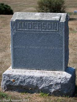 John S Waldo Anderson
