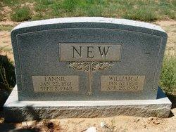 Fannie Amelia <i>McGaughey</i> New