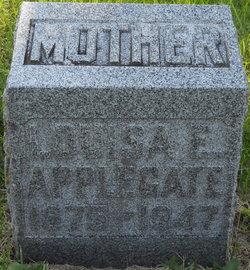 Louisa Elizabeth <i>Harper</i> Applegate