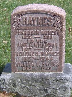 Jane Elizabeth <i>Wilkinson</i> Haynes