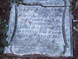 James Cary Harrison