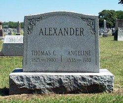 Angeline <i>Wilson</i> Alexander