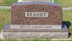 Amy Marilda <i>Peterson</i> Brandt