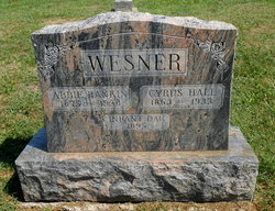 Cyrus Hall Wesner