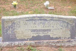 Nancy A Nannia <i>Trout</i> Baggs
