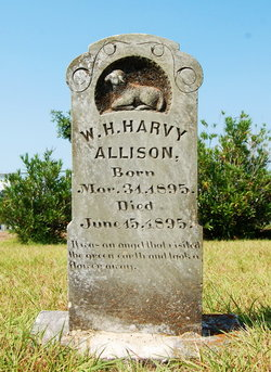 W. H. Harvey Allison
