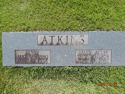 Sarah J. Sallie <i>Acuff</i> Atkins