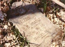 Mary Ann Polly <i>Wright</i> Bradley