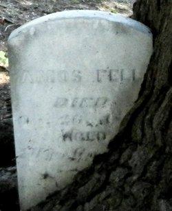 Amos Fell