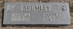 Susan Elizabeth Bettie <i>Crew</i> Brumley