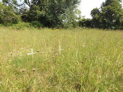 Kern Cemetery