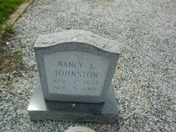 Nancy L Johnston