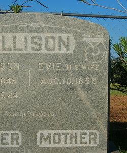 Evie Allison