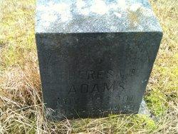 Theresa B. Adams