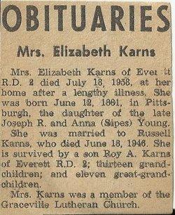 Annie Elizabeth <i>Young</i> Karns