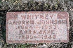 Andrew Johnson Whitney