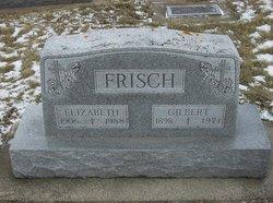 Gilbert Nicholas Frisch