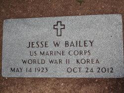 Jesse W Bailey
