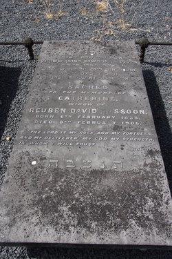 Catherine Sassoon
