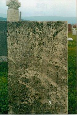 Peter J. Snyder