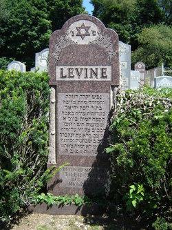 Tillie <i>Green</i> Levine