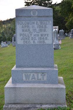 Solomon Z Walt